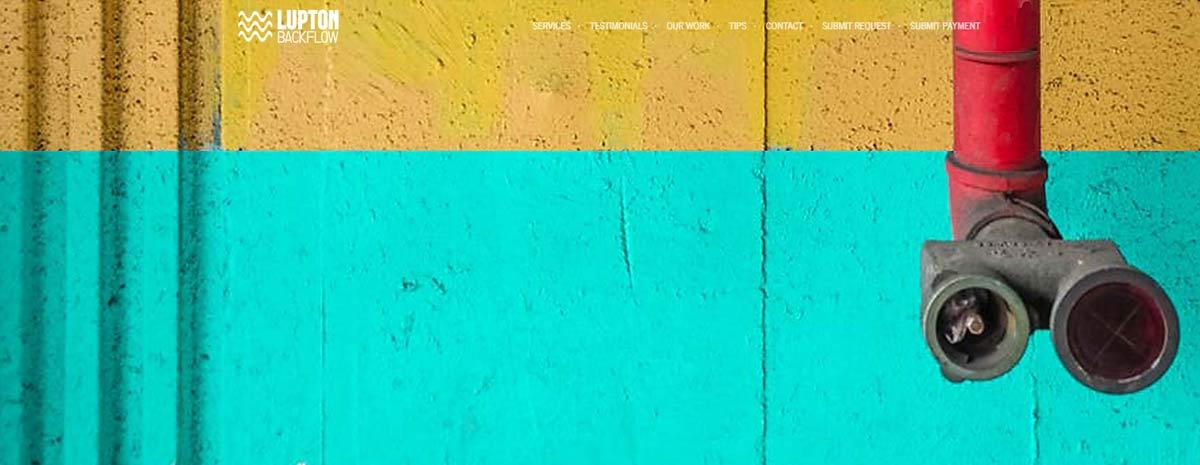 screen capture of Lupton Backflow